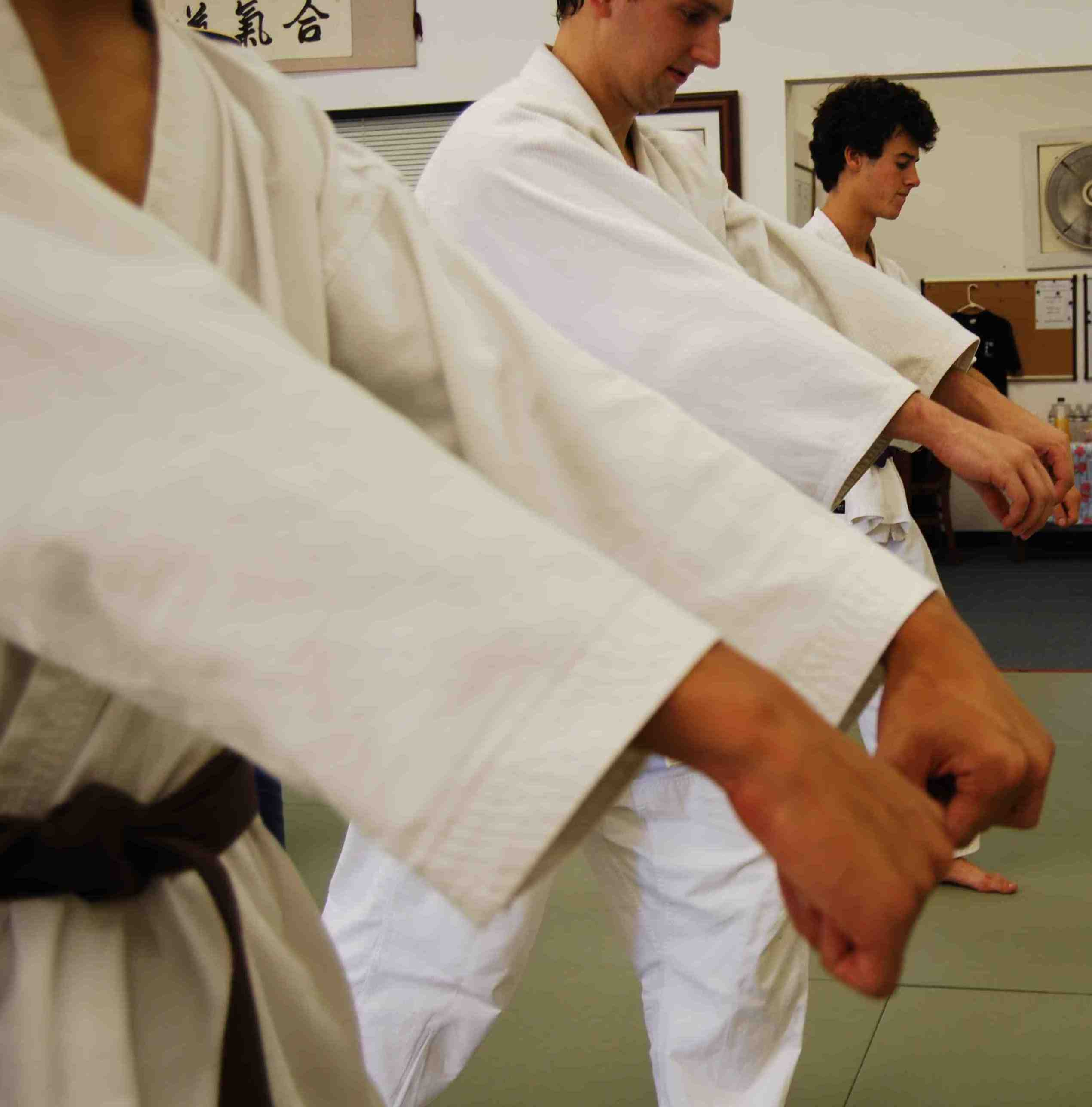 Aikitaiso Exercises Of Aikido Techniques Why We Do Them Aikido411 Aikido Techniques
